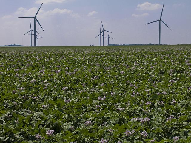 Transition énergétique : une régression sans précédent ?
