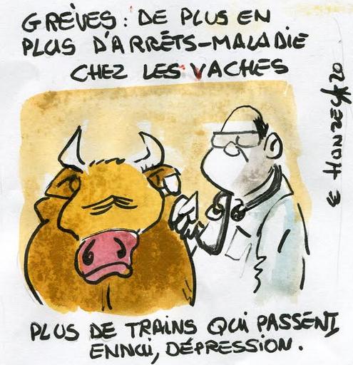 Trains en grève, vaches déprimées