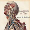 Anatomie de l