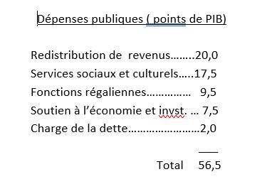 dépenses publiques